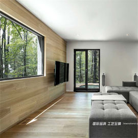 China Rotura-oscilación perfil-No-termal de aluminio door-Black-55/65mmseries proveedor